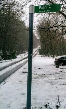 Snowdrop1